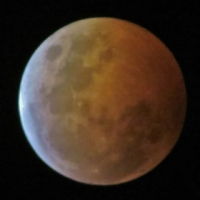 The Final Blood Moon in the Tetrad Rises,